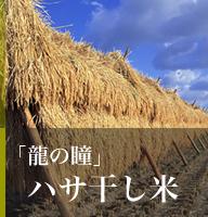 ハサ干し米