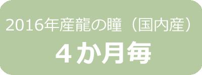 2016年産龍の瞳(国内産)定期4ヶ月毎