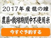2017年産龍の瞳 農薬・栽培期間中不使用米