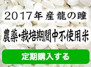 2017年産龍の瞳農薬・栽培期間中不使用米 定期購入する